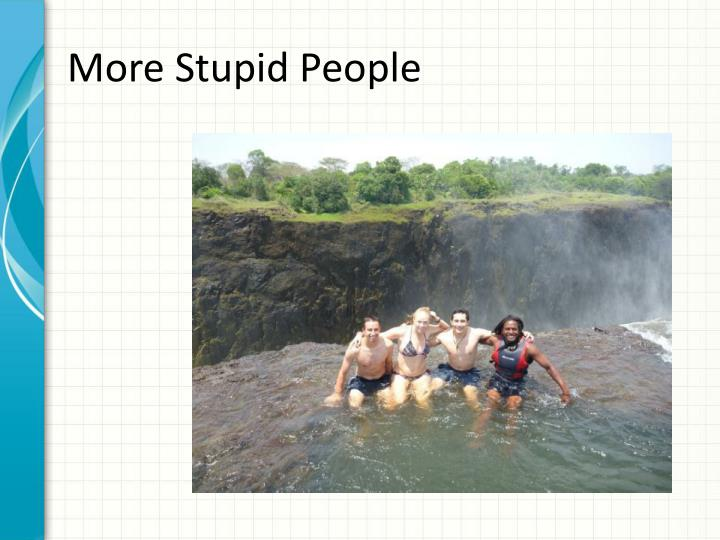More Stupid People