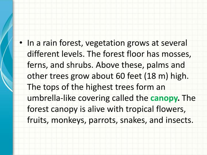 In a rain forest, vegetation grows at several different levels. The forest floor has mosses, ferns, and shrubs. Above these, palms and other trees grow about 60 feet (18 m) high. The tops of the highest trees form an umbrella-like covering called the