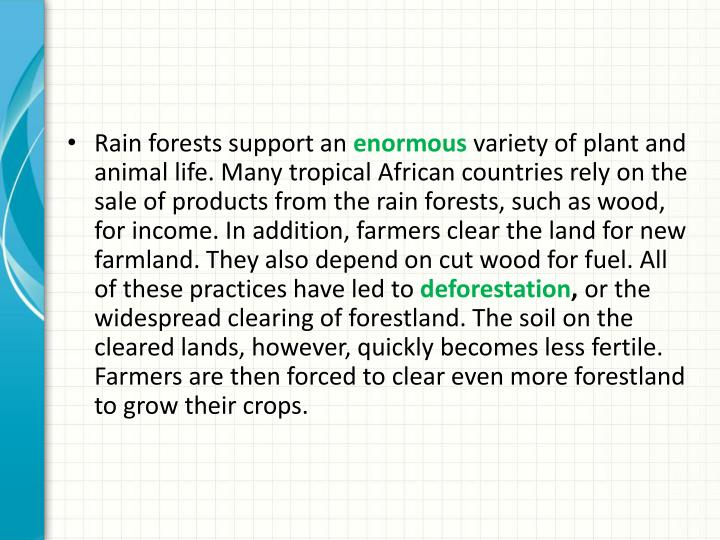Rain forests support an