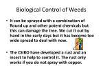 biological control of weeds1
