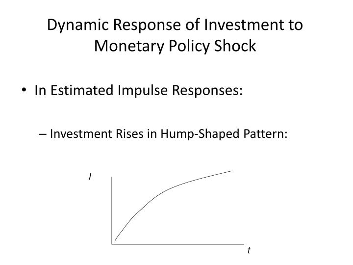 Dynamic Response of Investment to Monetary Policy Shock