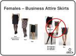 females business attire skirts