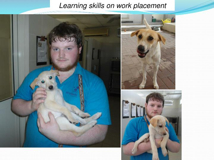 Learning skills on work placement