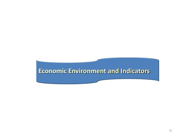 Economic Environment and Indicators
