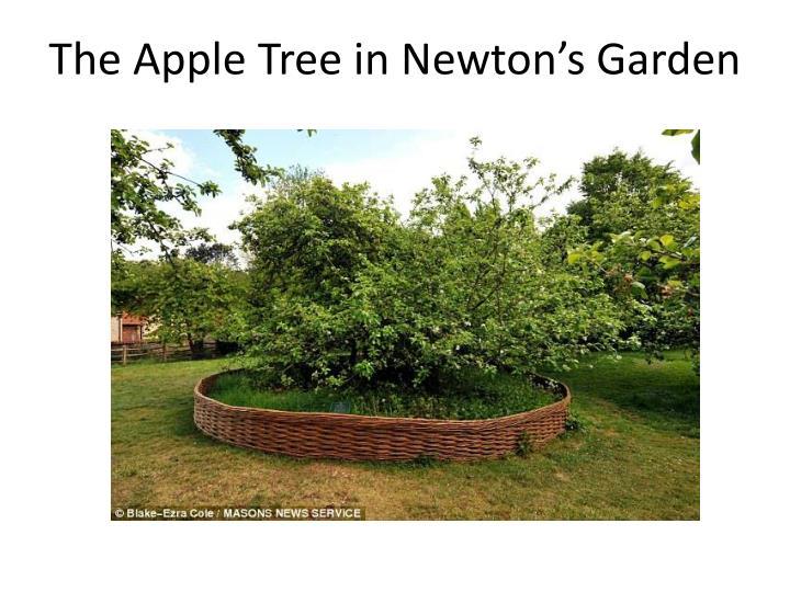 The Apple Tree in Newton's Garden
