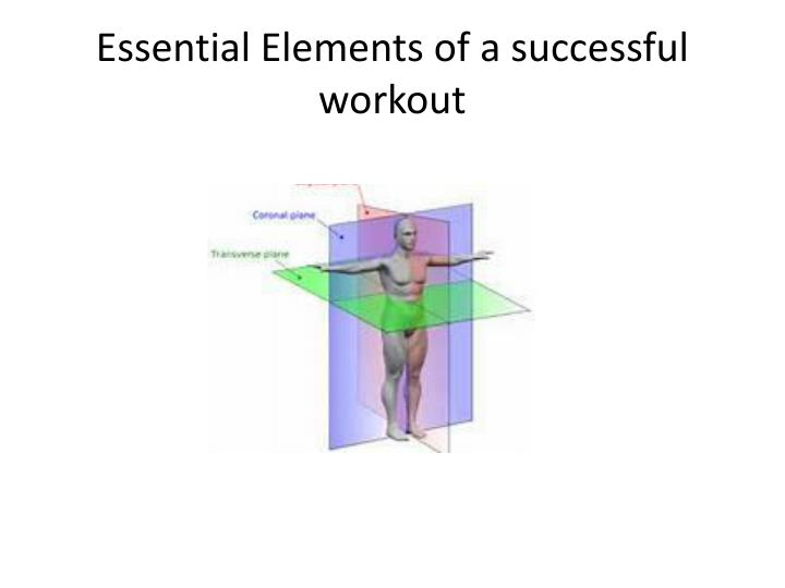 Essential Elements of a successful workout