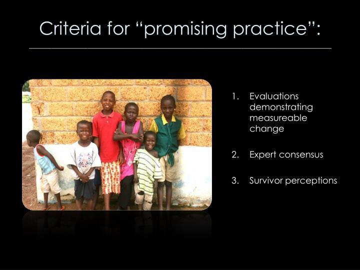 """Criteria for """"promising practice"""":"""