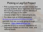 picking a leg ed project