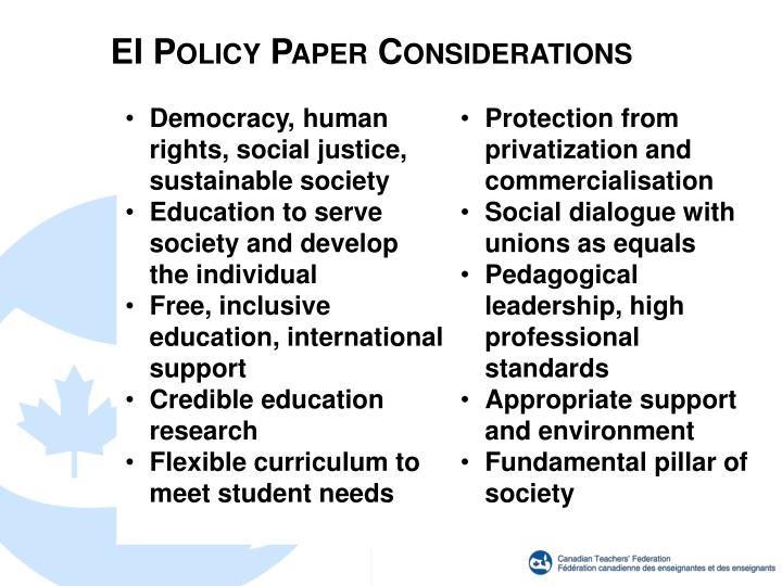 EI Policy Paper Considerations