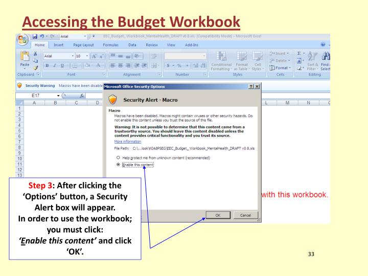 Accessing the Budget Workbook
