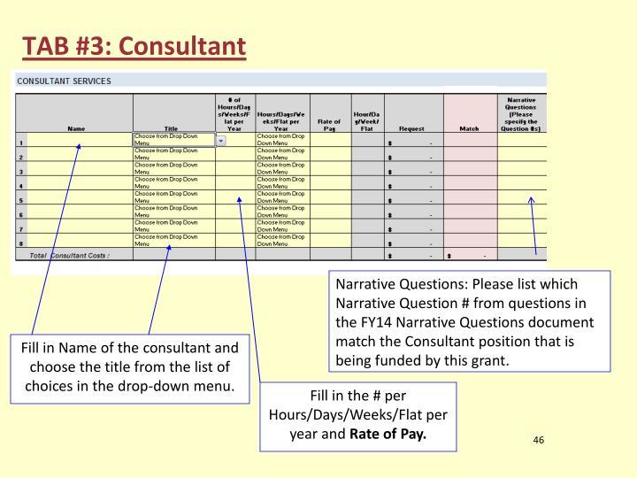 TAB #3: Consultant