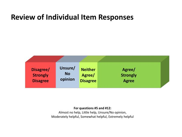 Review of Individual Item Responses