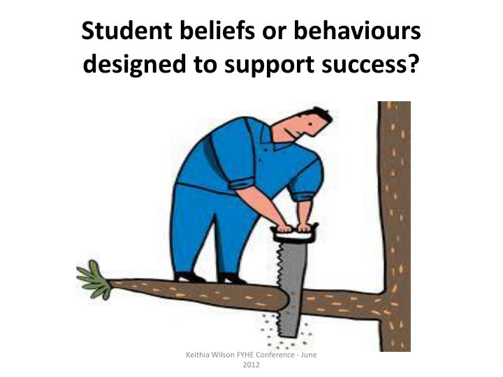 Student beliefs or behaviours designed to support success?