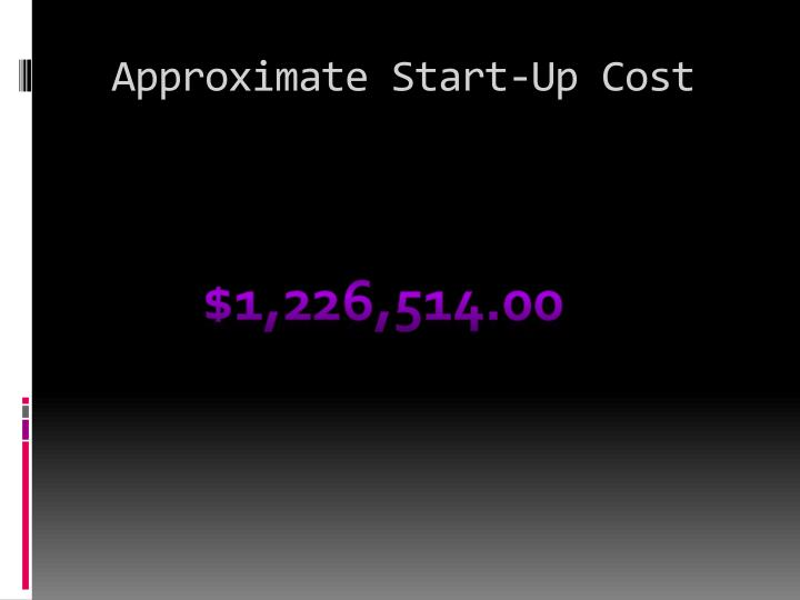 Approximate Start-Up Cost