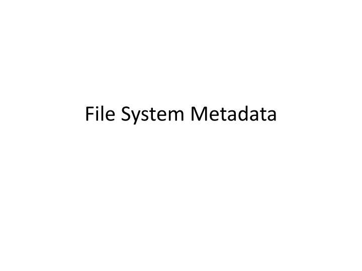 File System Metadata