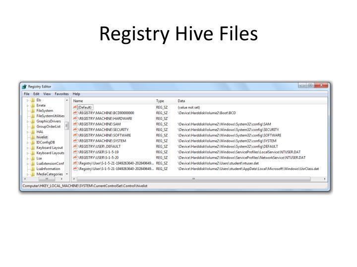 Registry Hive Files