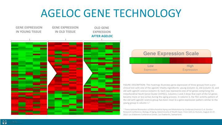 AGELOC GENE TECHNOLOGY