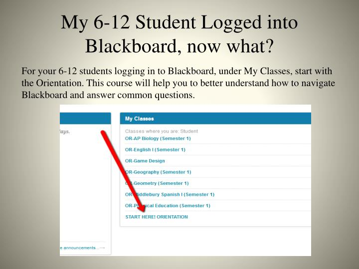 My 6-12 Student Logged into Blackboard, now what?