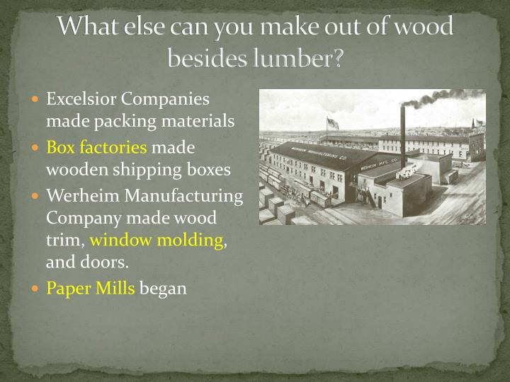 What else can you make out of wood besides lumber?