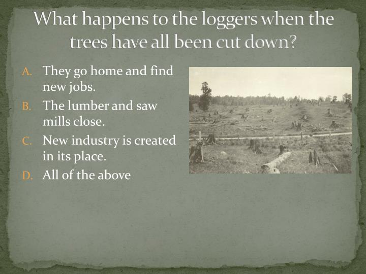 What happens to the loggers when the trees have all been cut down?