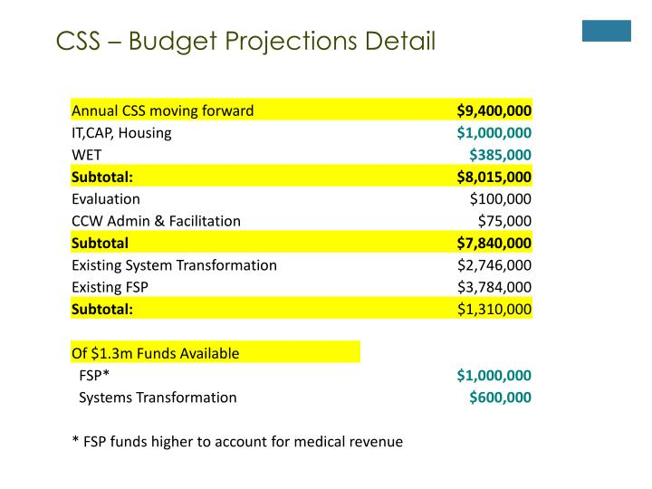 CSS – Budget Projections Detail