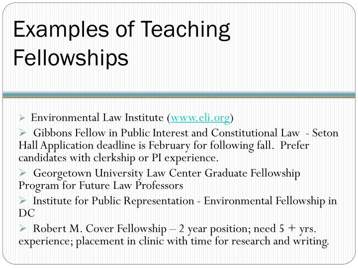Examples of Teaching Fellowships