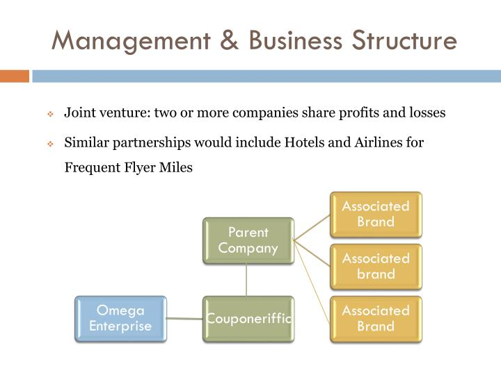 Management & Business Structure