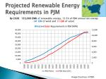 projected renewable energy requirements in pjm