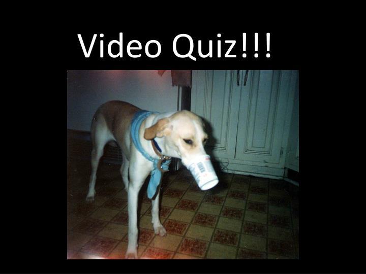 Video Quiz!!!