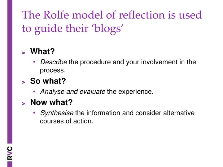 The Rolfe model of reflection is used to guide their 'blogs'