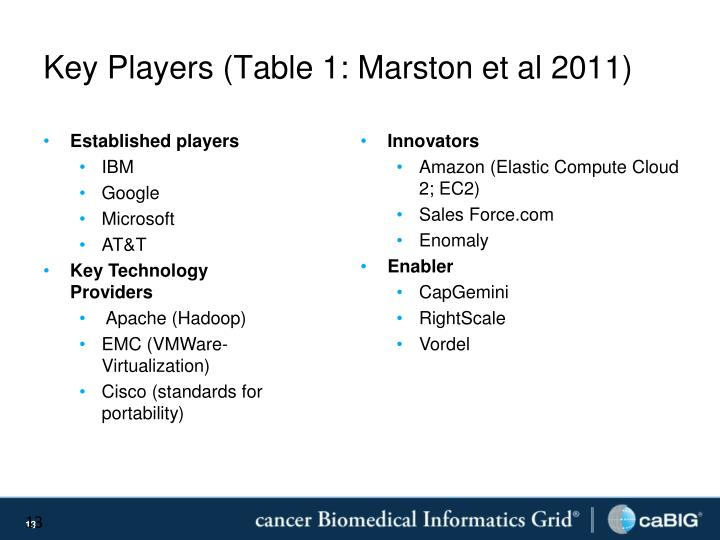 Key Players (Table 1: Marston et al 2011)