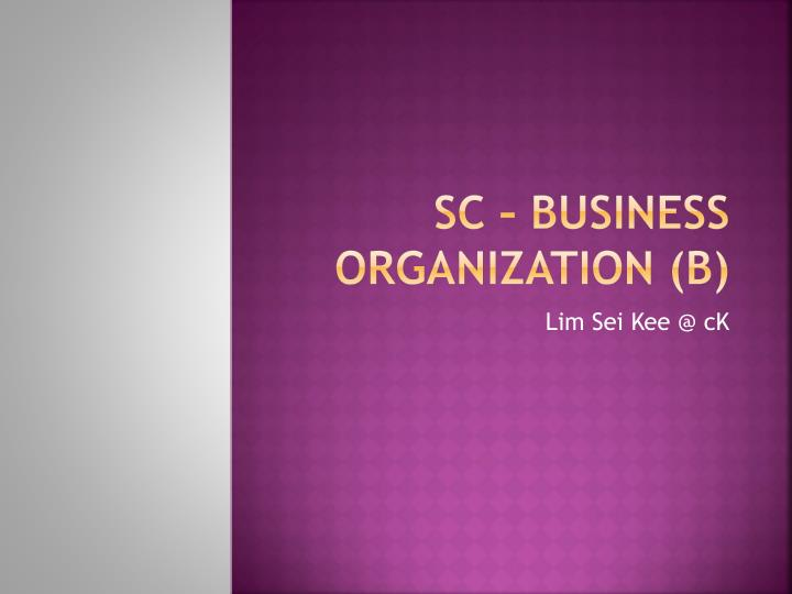 Sc business organization b