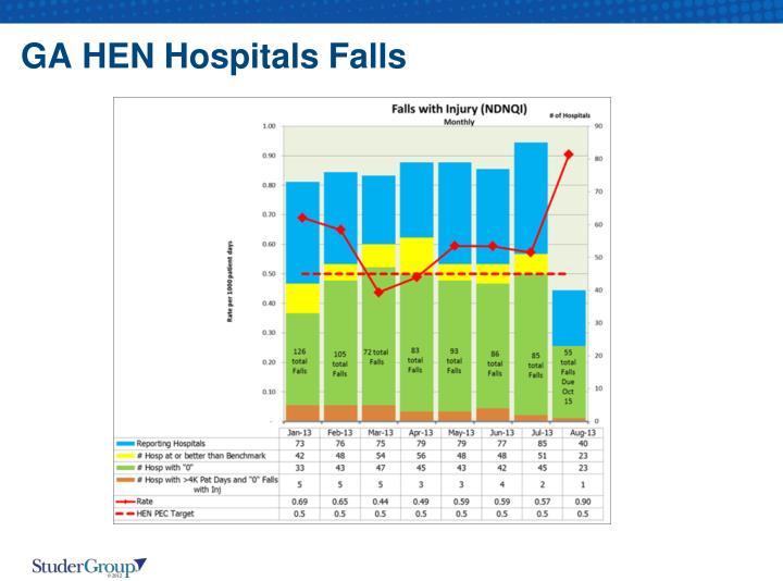 GA HEN Hospitals Falls
