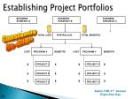 establishing project portfolios1