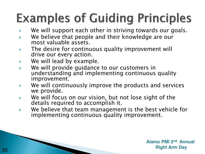 Examples of Guiding Principles