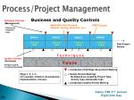 process project management