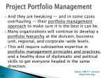 project portfolio management1