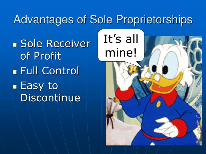 Advantages of Sole Proprietorships