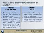 what is new employee orientation or n e o