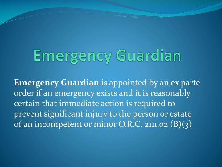 Emergency Guardian