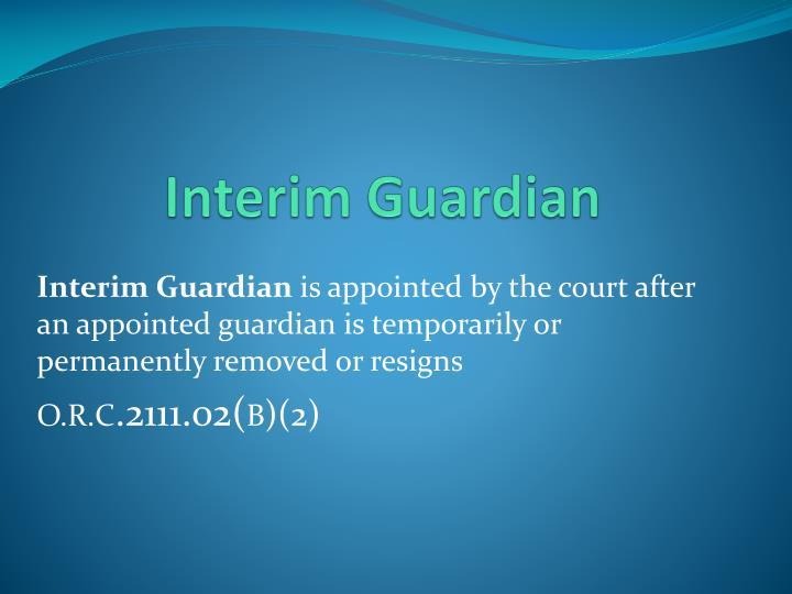 Interim Guardian
