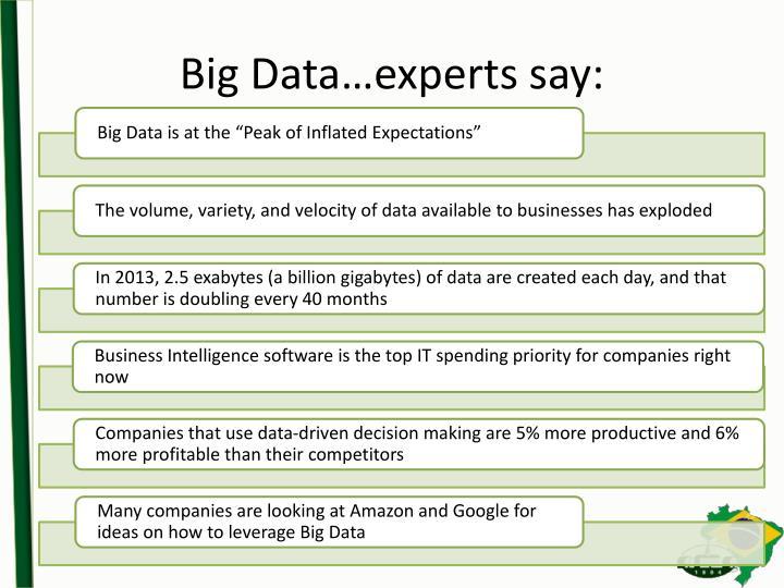 Big Data…experts say: