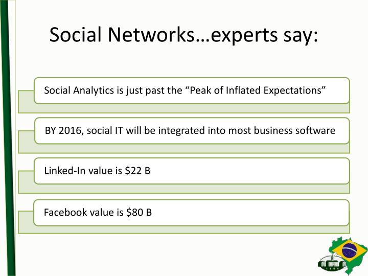 Social Networks…experts say: