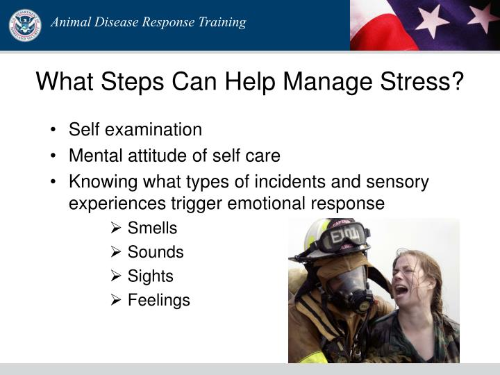 What Steps Can Help Manage Stress?