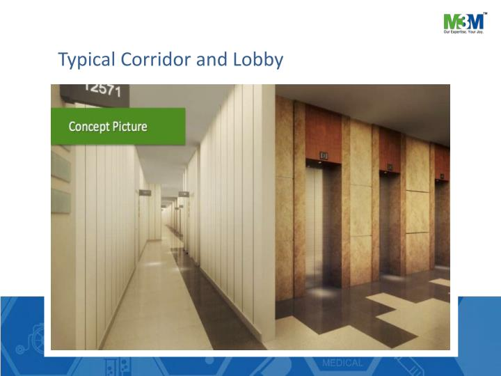 Typical Corridor and Lobby