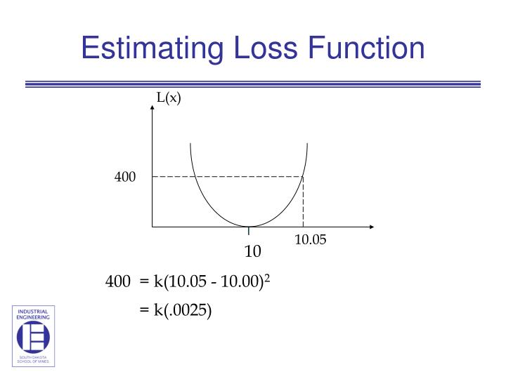 Estimating Loss Function