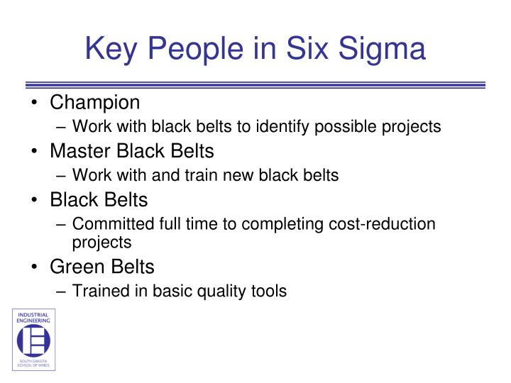 Key People in Six Sigma