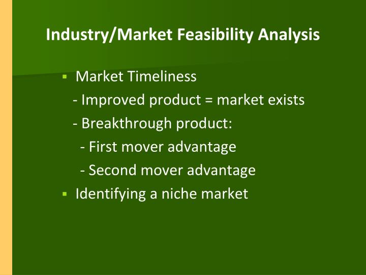 Industry/Market Feasibility Analysis