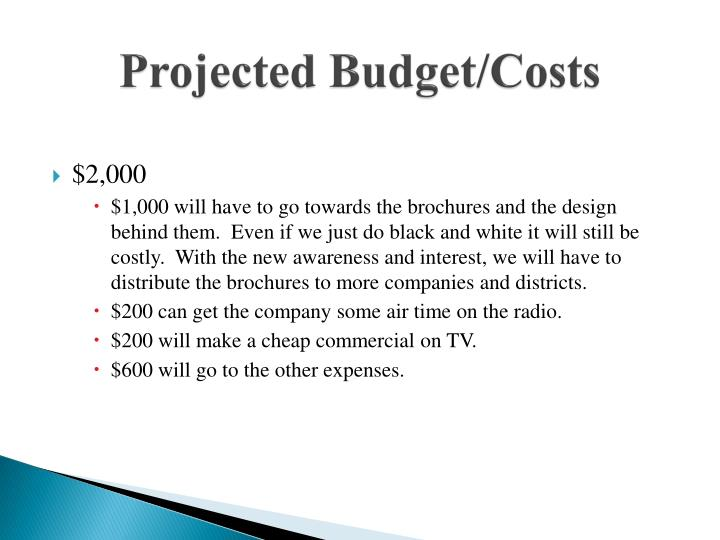 Projected Budget/Costs