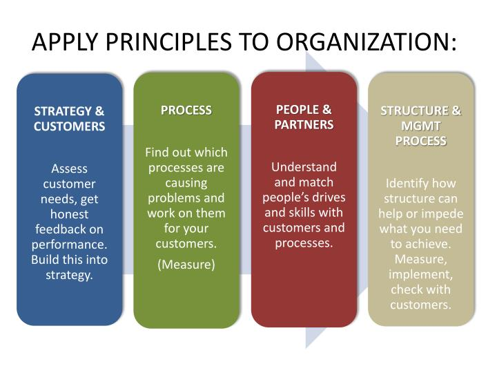 APPLY PRINCIPLES TO ORGANIZATION: